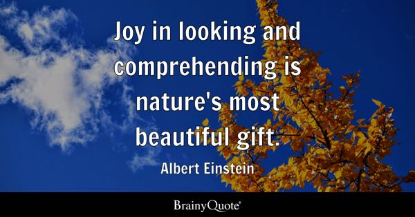 Joy in looking and comprehending is nature's most beautiful gift. - Albert Einstein