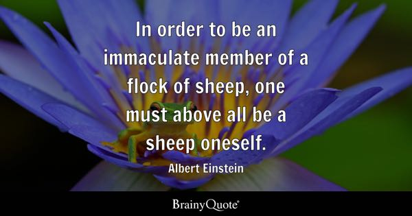 In order to be an immaculate member of a flock of sheep, one must above all be a sheep oneself. - Albert Einstein