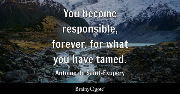 You become responsible, forever, for what you have tamed. - Antoine de Saint-Exupery