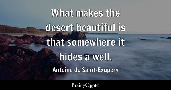 What makes the desert beautiful is that somewhere it hides a well. - Antoine de Saint-Exupery