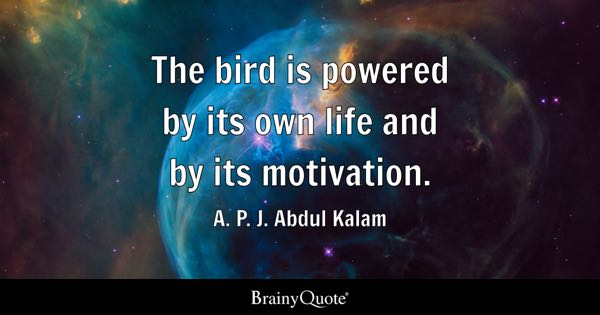 The bird is powered by its own life and by its motivation. - A. P. J. Abdul Kalam