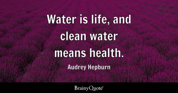 Water is life, and clean water means health. - Audrey Hepburn