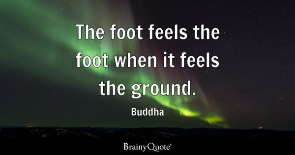 The foot feels the foot when it feels the ground. - Buddha