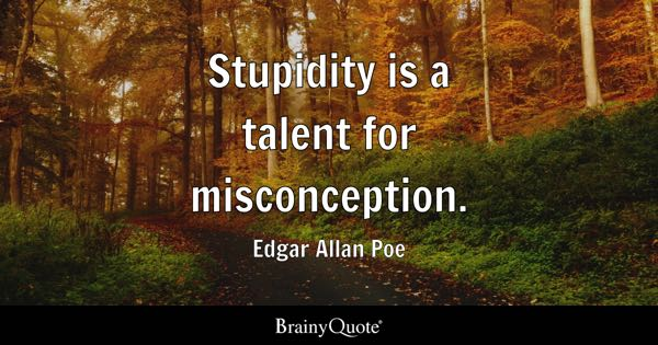 Stupidity is a talent for misconception. - Edgar Allan Poe