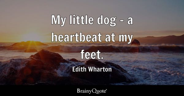 My little dog - a heartbeat at my feet. - Edith Wharton