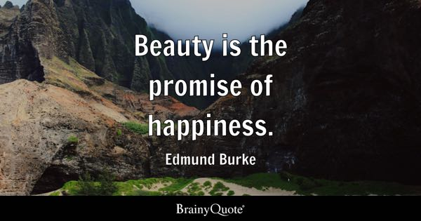 Beauty is the promise of happiness. - Edmund Burke