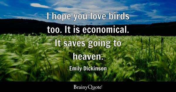 I hope you love birds too. It is economical. It saves going to heaven. - Emily Dickinson