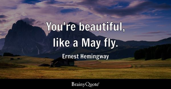 You're beautiful, like a May fly. - Ernest Hemingway