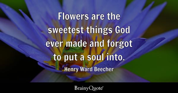 Flowers are the sweetest things God ever made and forgot to put a soul into. - Henry Ward Beecher