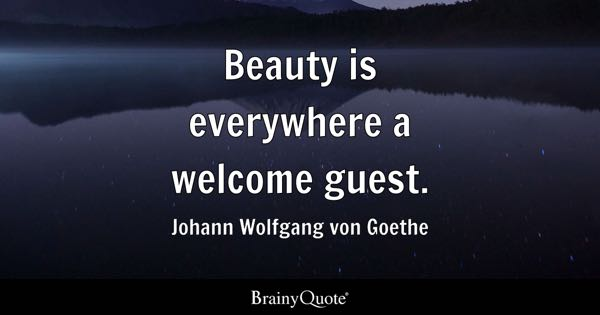 Beauty is everywhere a welcome guest. - Johann Wolfgang von Goethe