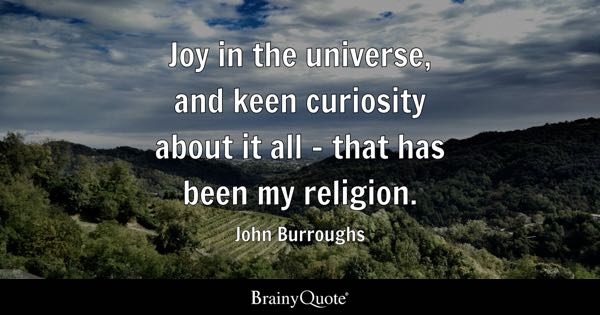 Joy in the universe, and keen curiosity about it all - that has been my religion. - John Burroughs