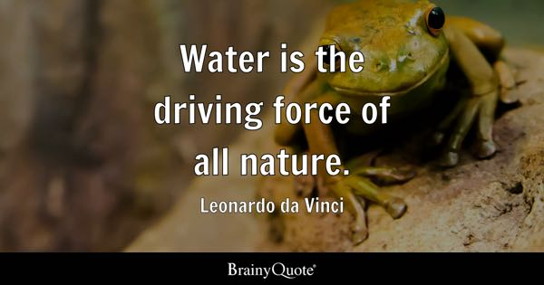 Water is the driving force of all nature. - Leonardo da Vinci