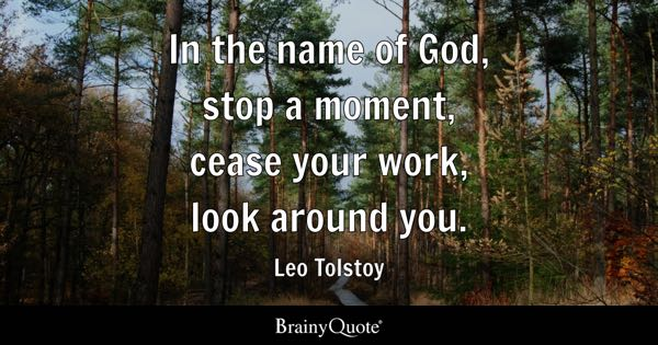 In the name of God, stop a moment, cease your work, look around you. - Leo Tolstoy