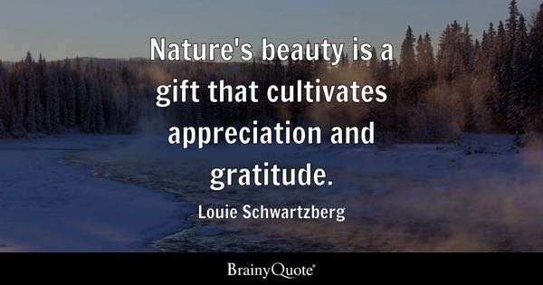 Nature's beauty is a gift that cultivates appreciation and gratitude. - Louie Schwartzberg