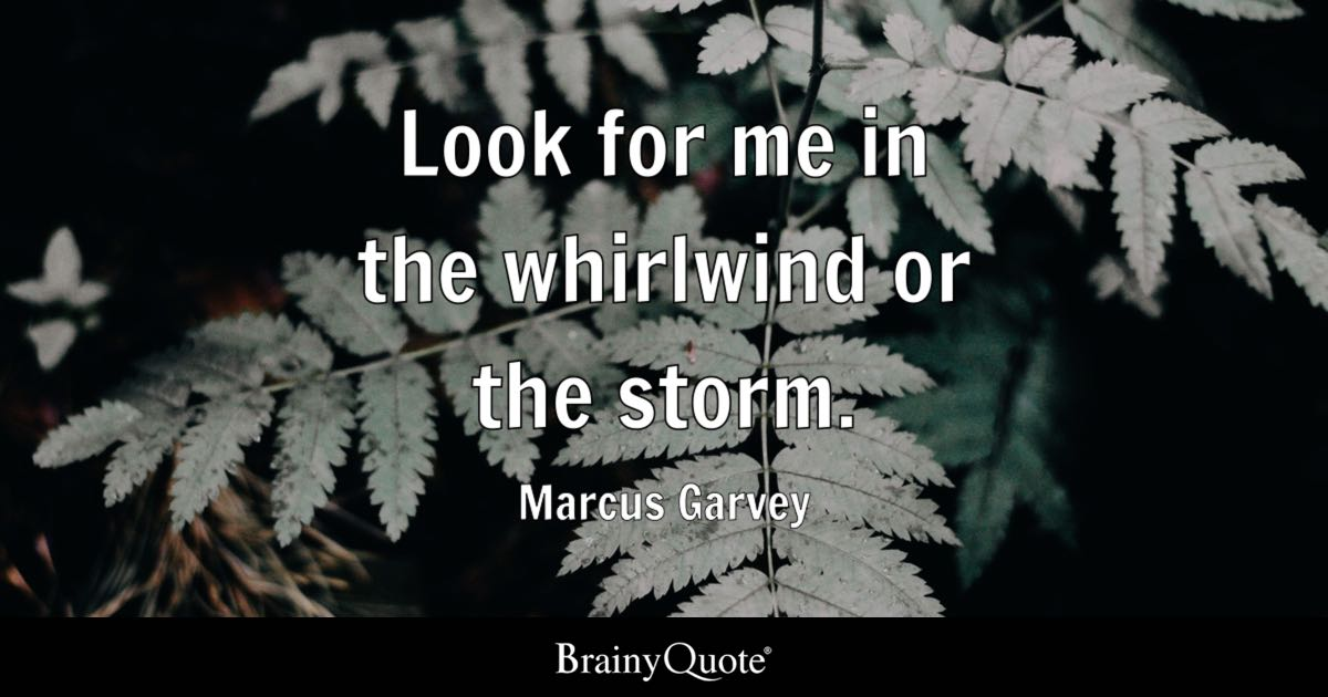 Look for me in the whirlwind or the storm. - Marcus Garvey