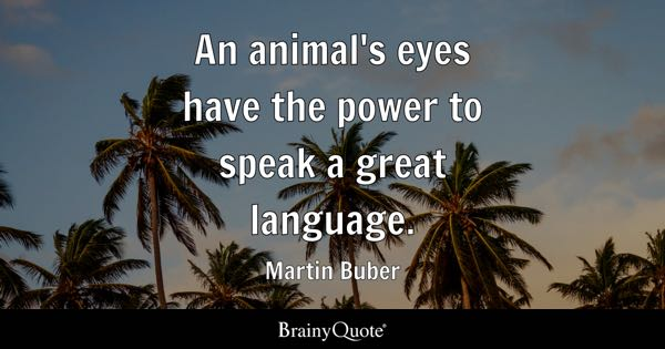 An animal's eyes have the power to speak a great language. - Martin Buber