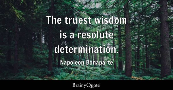 The truest wisdom is a resolute determination. - Napoleon Bonaparte