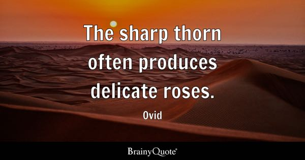 The sharp thorn often produces delicate roses. - Ovid