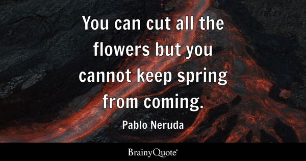 You can cut all the flowers but you cannot keep spring from coming. - Pablo Neruda