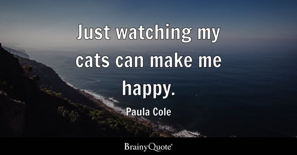 Just watching my cats can make me happy. - Paula Cole