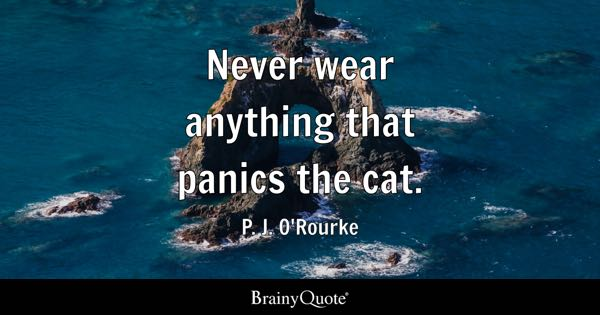 Never wear anything that panics the cat. - P. J. O'Rourke