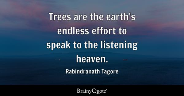 Trees are the earth's endless effort to speak to the listening heaven. - Rabindranath Tagore