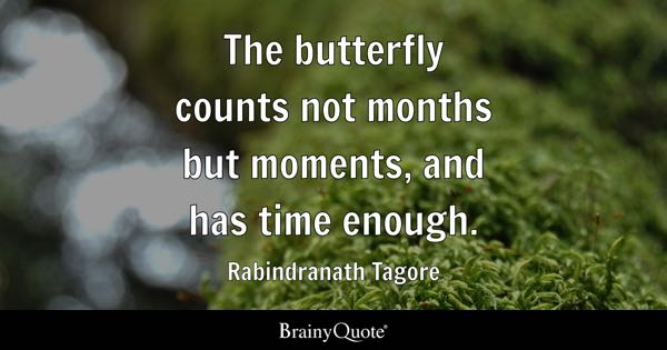 The butterfly counts not months but moments, and has time enough. - Rabindranath Tagore
