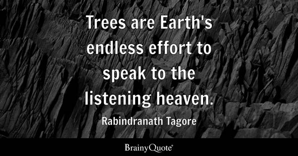 Trees are Earth's endless effort to speak to the listening heaven. - Rabindranath Tagore