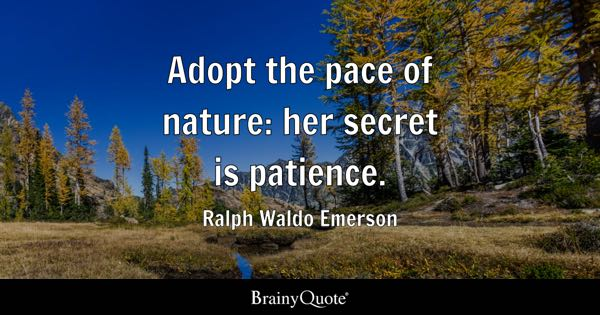 a biography of ralph waldo emerson one of the great geniuses Quotes by ralph waldo emerson (page 11) ralph waldo emerson ralph waldo emerson great geniuses have the shortest biographies ralph waldo emerson on biography 1 bookmarks on this quote.