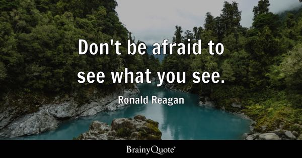 Don't be afraid to see what you see. - Ronald Reagan