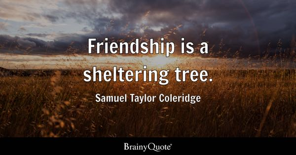 Friendship is a sheltering tree. - Samuel Taylor Coleridge