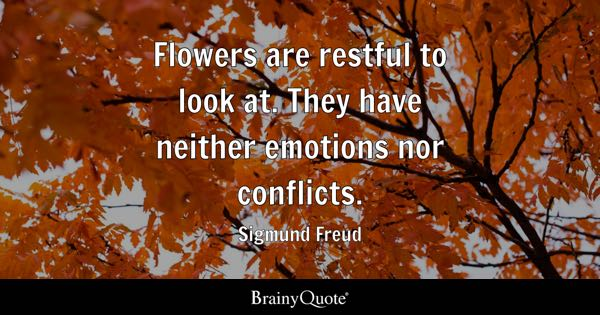 Flowers are restful to look at. They have neither emotions nor conflicts. - Sigmund Freud
