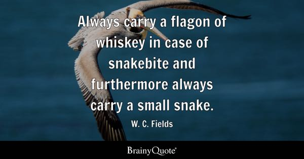 Always carry a flagon of whiskey in case of snakebite and furthermore always carry a small snake. - W. C. Fields